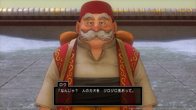 dragonquestxi_ps4images3_0005