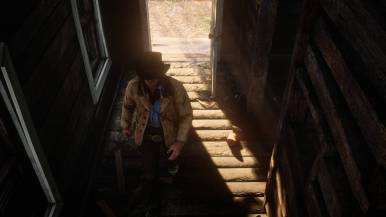 reddeadredemption2_octimages_0037