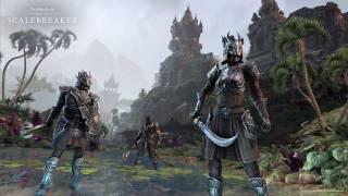 La mise à jour next gen de The Elder Scrolls Online se prend une semaine de retard