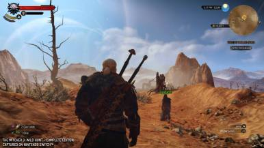 thewitcher3wildhunt_gc19switchimages_0011