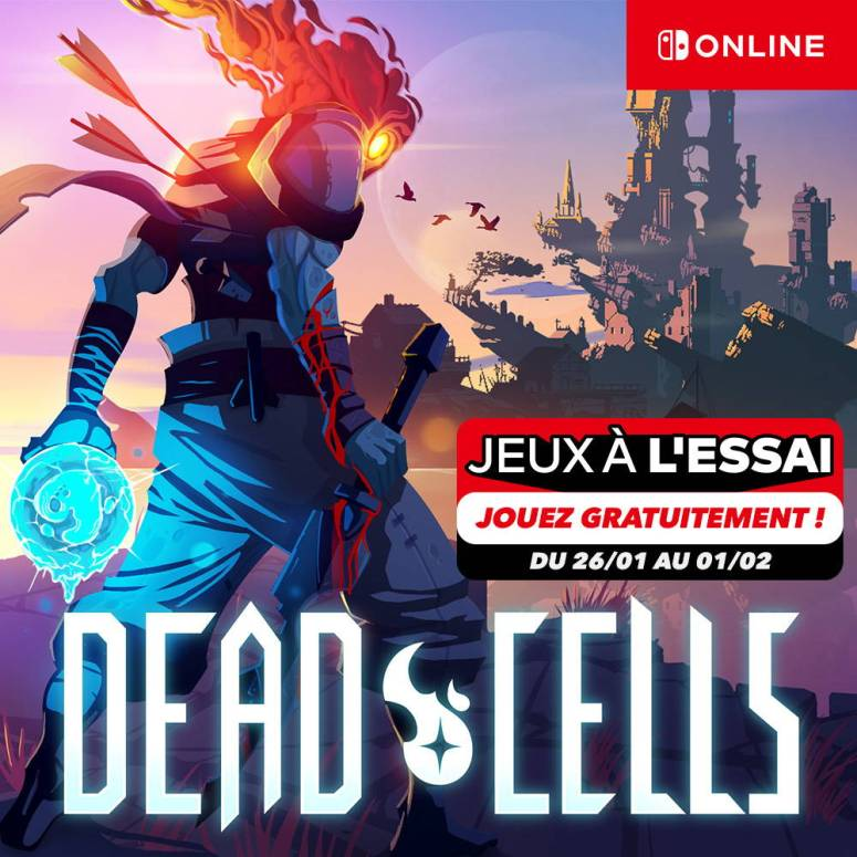 deadcells_freeaccessswitch_0004