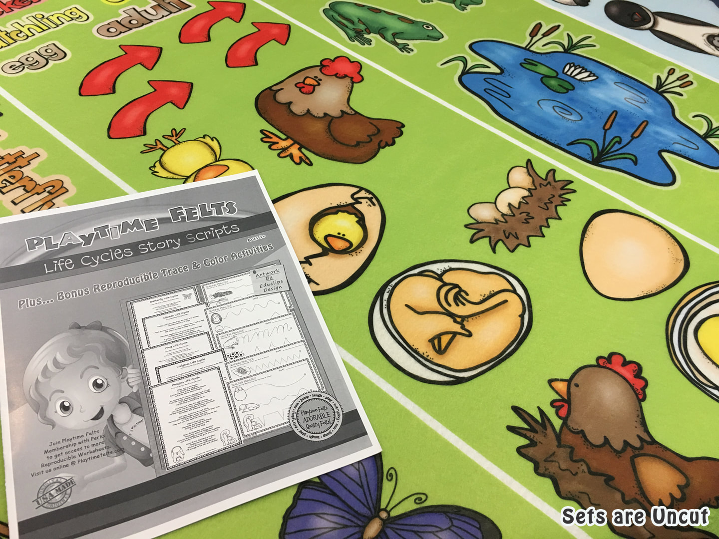 Five Life Cycles Flannel Board Stories For Toddlers