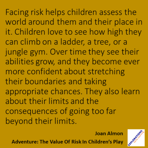 Adventure: The Value Of Risk In Children's Play   Quote ...