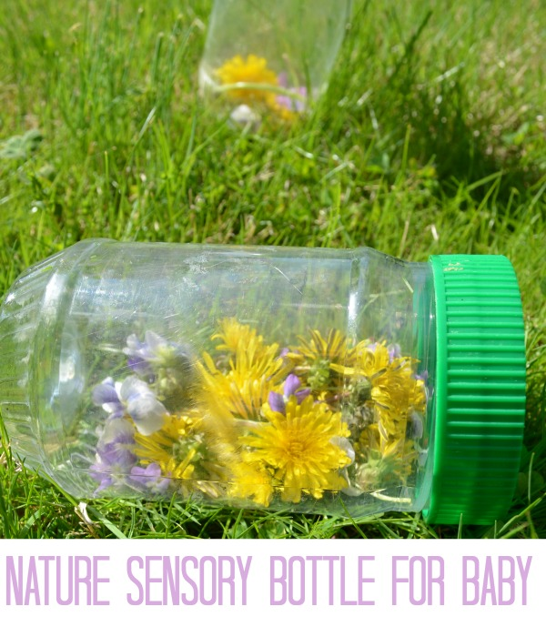 Wildflower Discovery Bottle - FUN baby sensory activity!