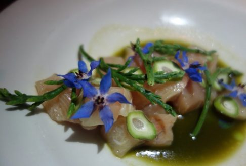 Hamachi with Sea Beans, White Fir and Wild Sorrel Broth