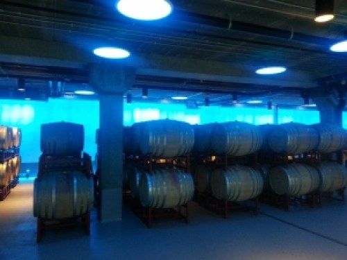 Hilliard Bruce Winery Barrel Room with LED lighting