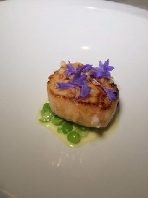 Scallop, English peas, cherry blossom, puffed buckwheat
