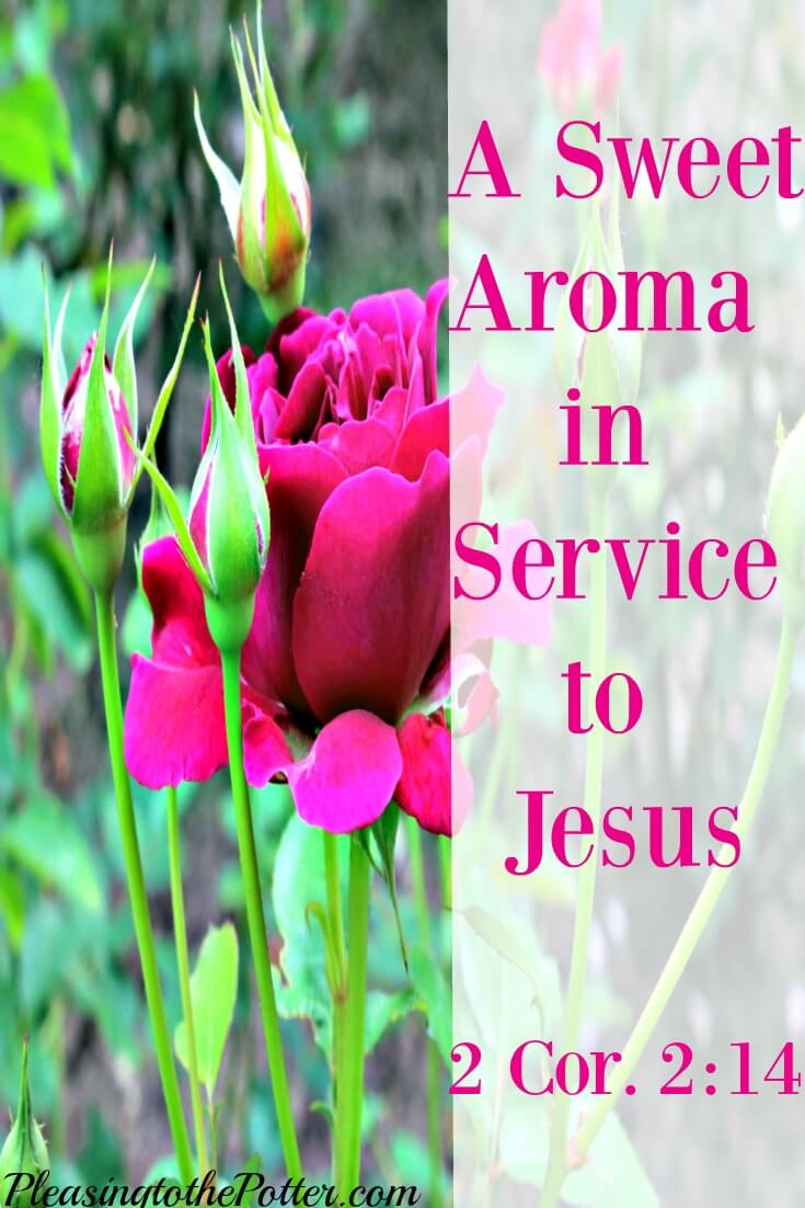 A Sweet Aroma When You Delight In Serving Jesus Horace
