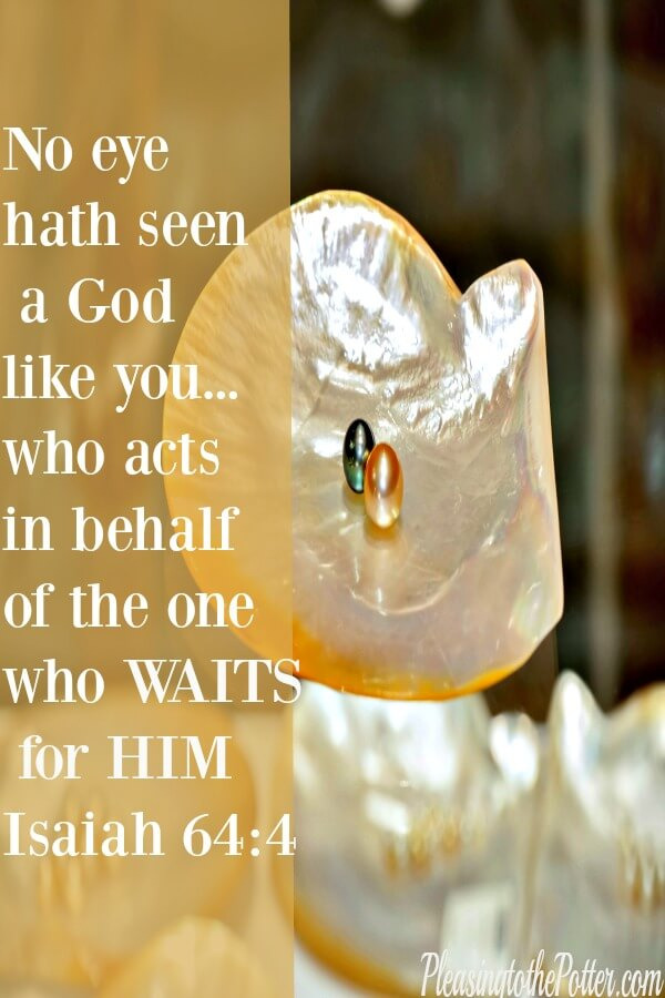 Wait on the Lord and trust His perfect timing
