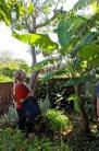 Ailie & banana tree