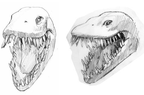 elasmosaurus sketches