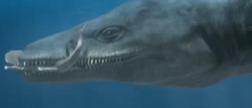 Kimmerosaurus Planet Dinosaur