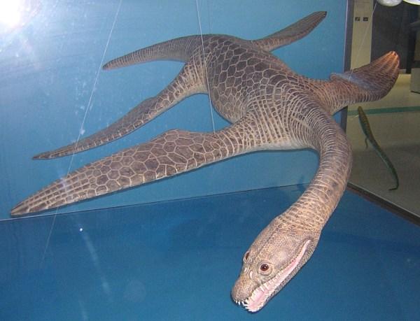 Meyerasaurus victor model
