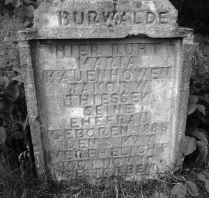Maria Kauenhowen's 1909 grave in Burwalde. Upon reading the stone more carefully we find that she was actually Mrs. Jakob W. Thiessen!