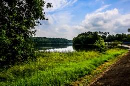 Jezioro Kowalskie widok od strony Wierzonki