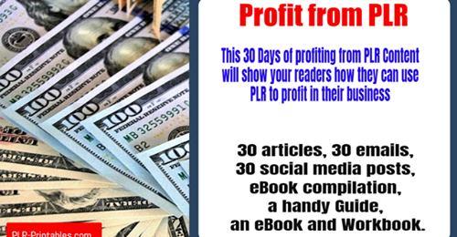 Profit from PLR 1