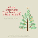 Five Things I'm Loving This Week: December 11, 2015