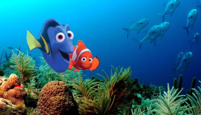 Finding Nemo - Plugged In