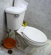 leaking toilet Leaking Toilet