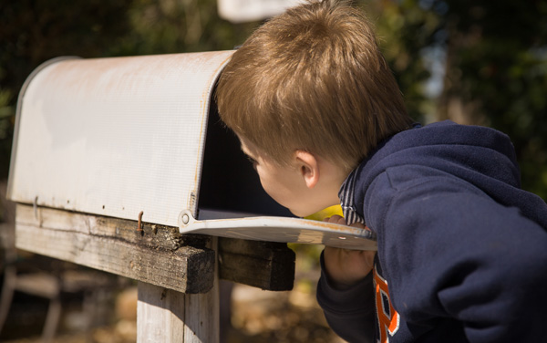 Direct Mail Marketing Services