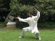 BaFa Eight Methods style Kung Fu plumpub.com