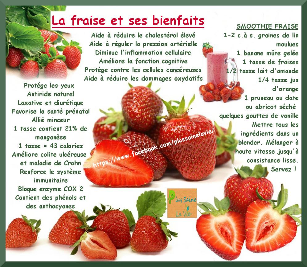 la fraise et ses bienfaits ⋆