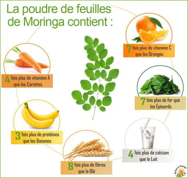 moringa-infographie