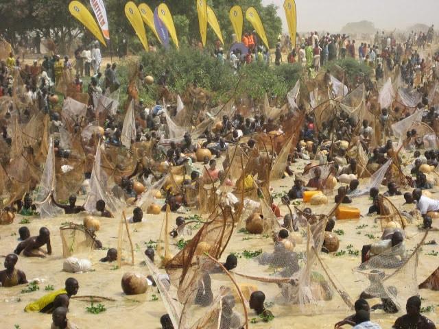 Argungu Fishing Festival