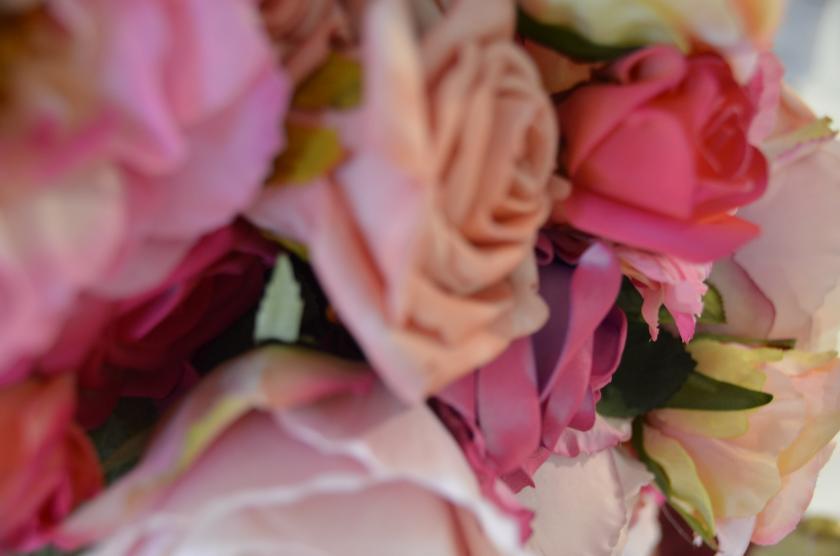 Rosen in Rose I Plusperfekt.de