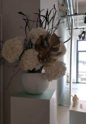 Weiße Pracht: Riesen Hortensien