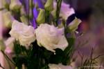 Ein weißer Rosenstrauß