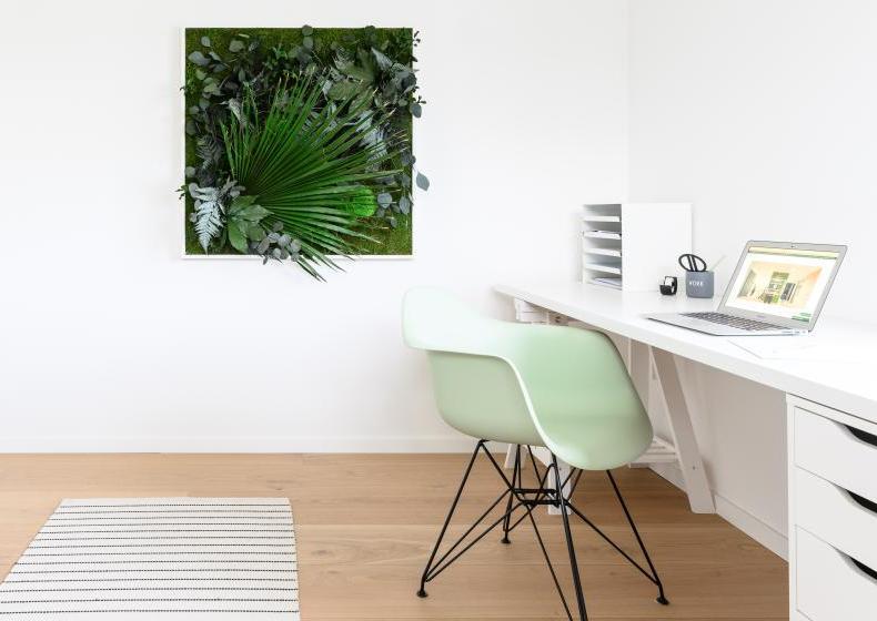 Statt Urban Jungle, entspanntes Grün im Home Office ...