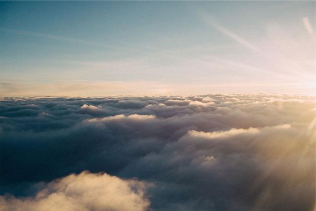 Photo by Liane Metzler via unsplash.com