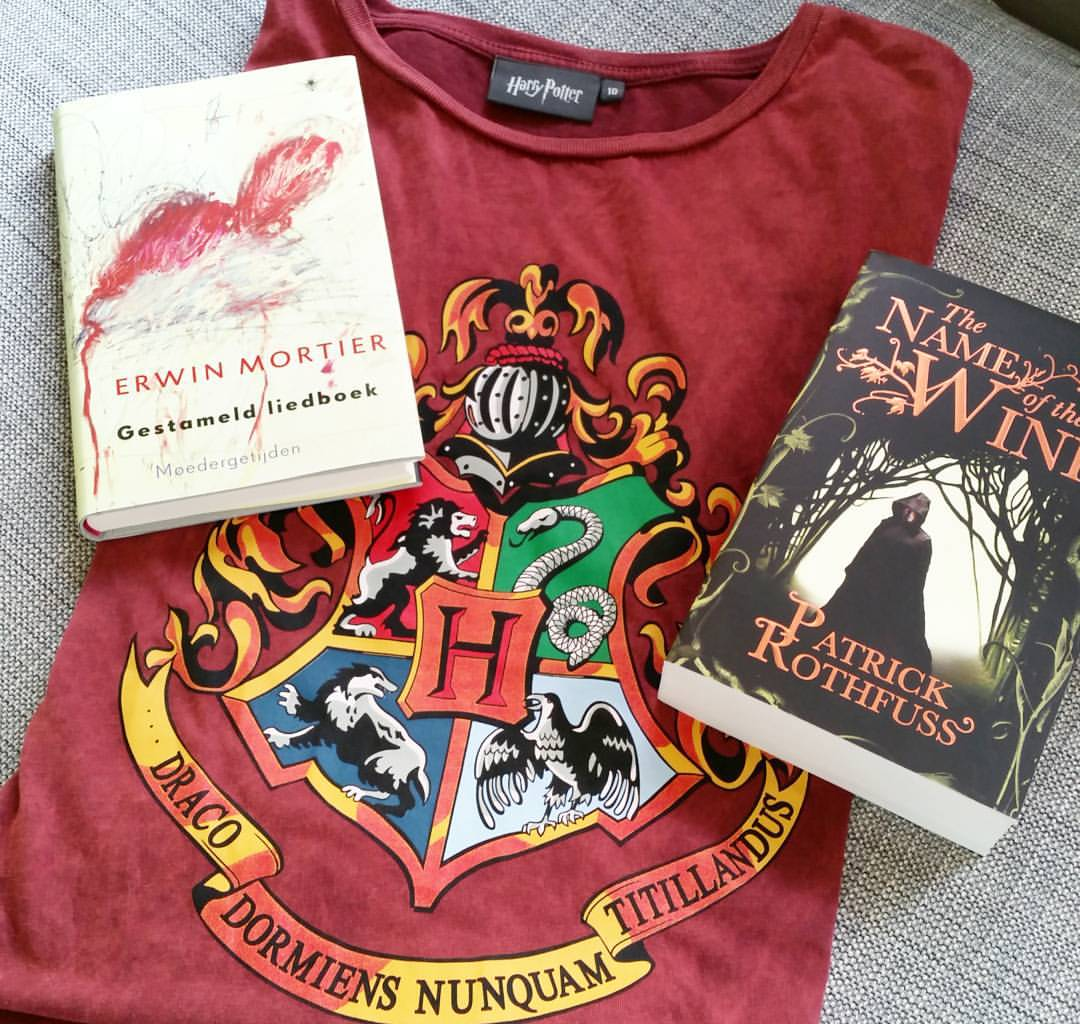 The Stammered Songbook, the Name of the Wind and a brand new Harry Potter t-shirt as part of my winter book haul