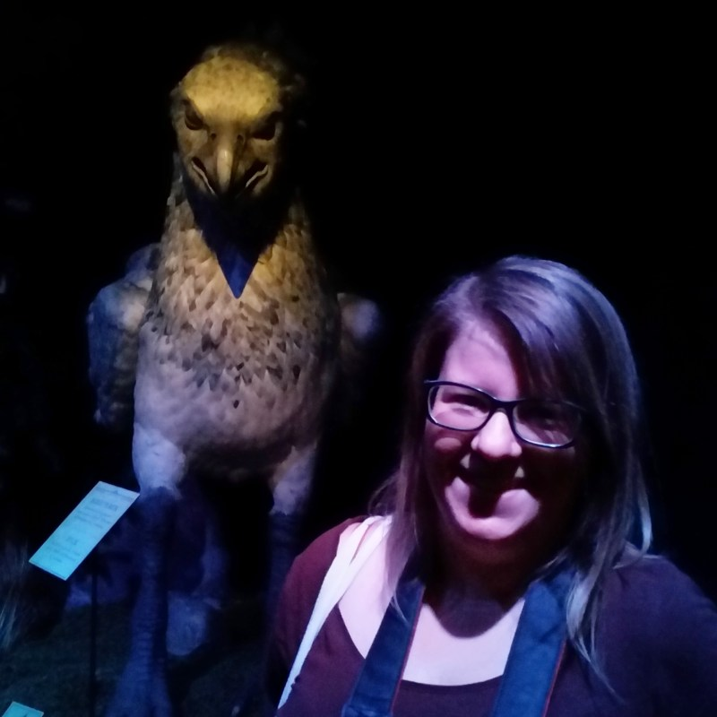 Last Week - I visited the Harry Potter expo