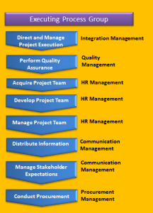 Direct and manage project execution