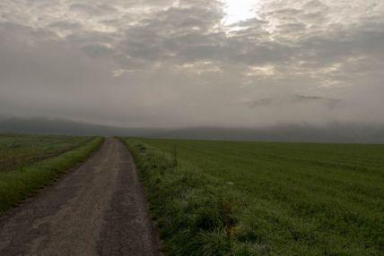 Nebel über dem Randen