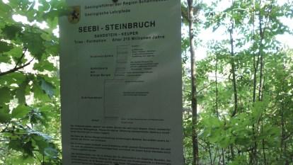 Seebibruch