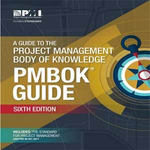 pmbok as a standard