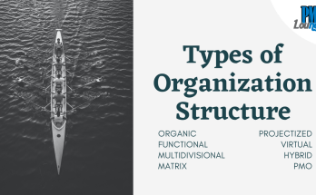 types of organization structure - Types of Organization Structure