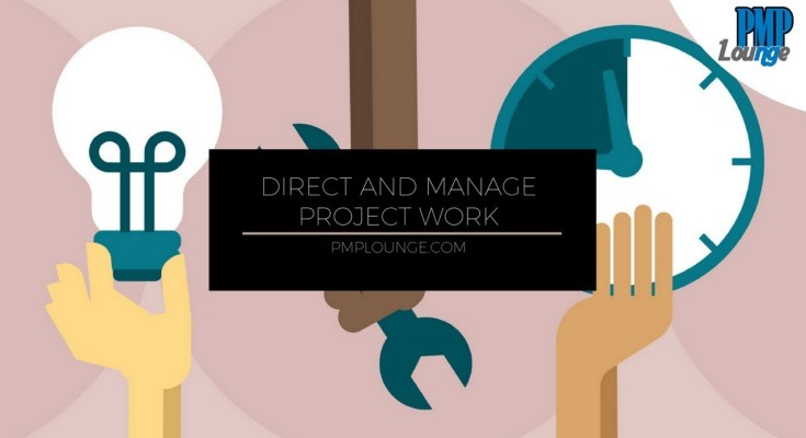 Direct and Manage Work process