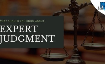expert judgment - What should you know about Expert Judgment?