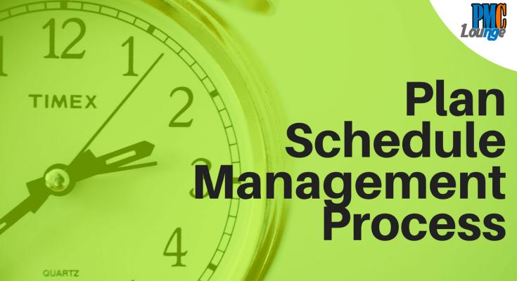 plan schedule management process in pmp - Plan Schedule Management Process