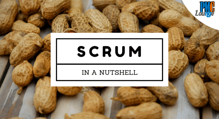 what is a scrum basics of scrum and sprint - Scrum - In a nutshell