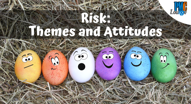 risk themes and risk attitudes - Risks: Themes and Attitudes