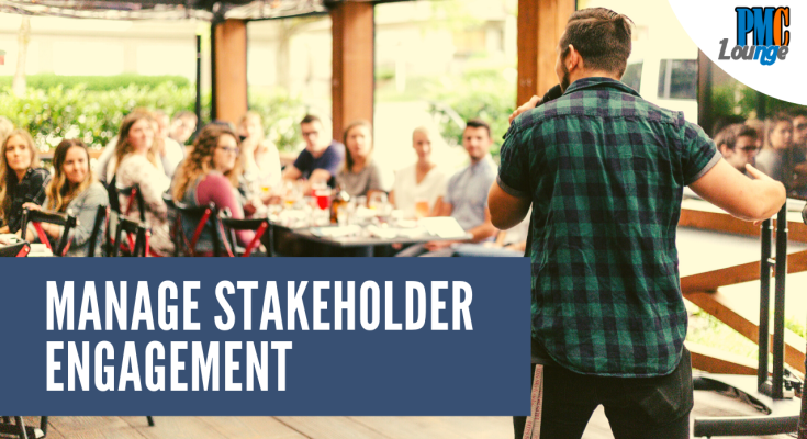 manage stakeholder engagement process - Manage Stakeholder Engagement