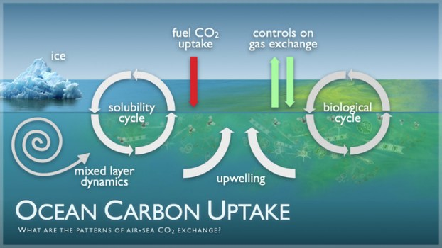 CO2 Calculation In The Global Carbon Cycle May Be Off Due To