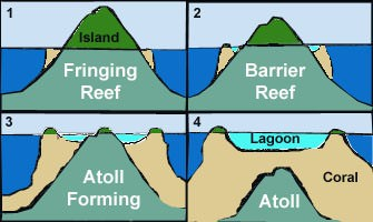 Fringing reef- barrier reef - atoll -lagoon