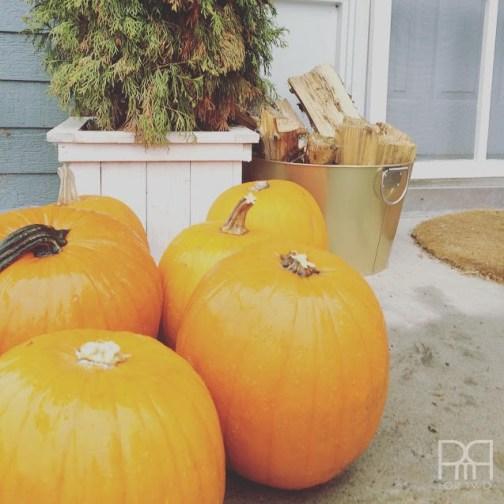 pumpkin spice muffin 3