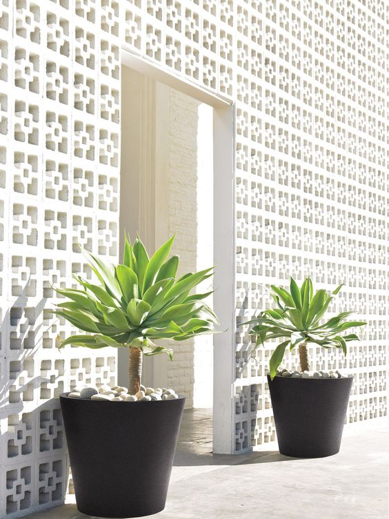 white divider with potted plants
